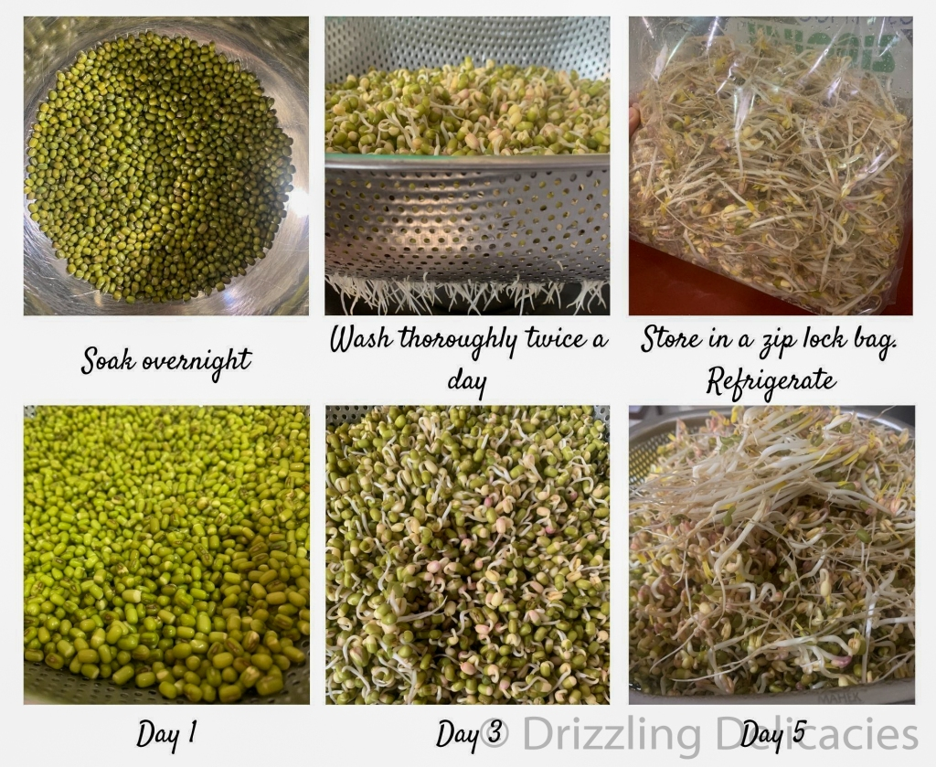 mung bean sprouts at home